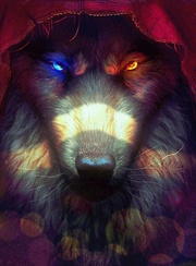 [ALC]Wolf
