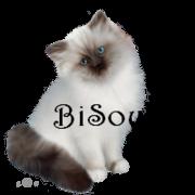 vote au booster - Page 2 1367817902