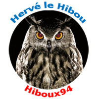 hiboux94