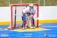 Long Life Hockey League 14-99