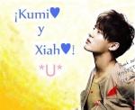KumiXi