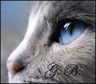 Gail Blue