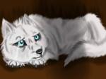 whitewolfwolfpup