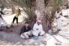 صور من الذاكرة Fe10-114