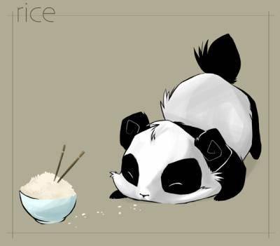 Familiersmanga Petit Panda