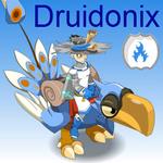 Druidonix