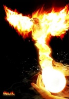 Phoenix Infernum