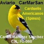 CarMarSan