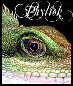 Phyliok