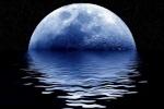 Luna310