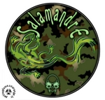 Salamandre (jérom)