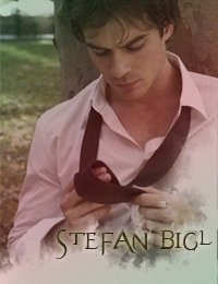 Stefan Bigl