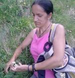 Dorina Ciocan