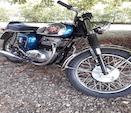 BrunoA65