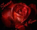 Tears of Roses
