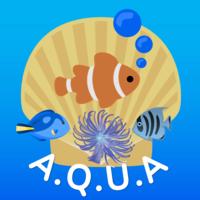 Aquariophilie En Général 16-25