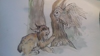 Lynxharfang