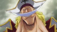 Fiches des pirates 261-41