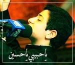 يا حبيبي يا حسين