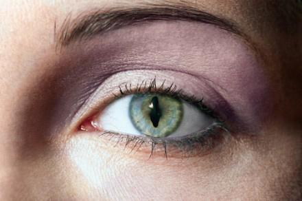 Eye majig