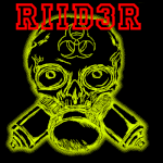 Riid3R