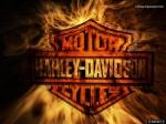 H4RLEY_DAVIDSON
