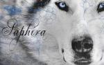 Laya / Shin / Saphira