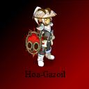 Hoa-Gazoil