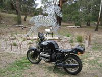 Australian and New Zealand rides and meetings 6032-16