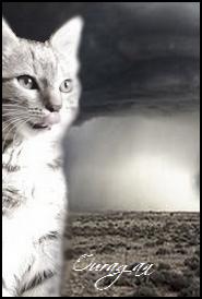 Nuage d'Ouragan