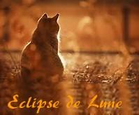 Petite Eclipse