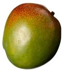 kalexandr