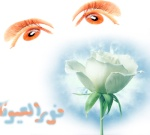 نور العيون