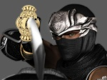 Kupper The Ultimate Ninja