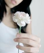 sweet-clover