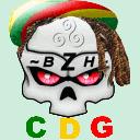 cdg41