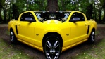 06yellowgt