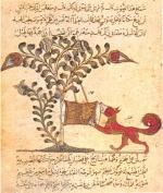 Le Goupil / Roubâh