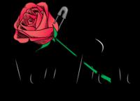 New Rose Cocktail Bar