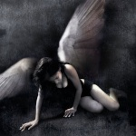 Dark Angel666