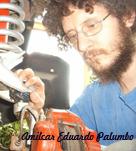 amilcar eduardo palumbo