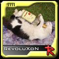 RevoluxoN
