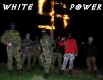 WHITE88POWER
