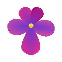 非洲紫羅蘭名錄 | African Violets Catalogue - 公告 1-18
